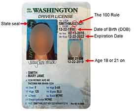 Washington Drivers License